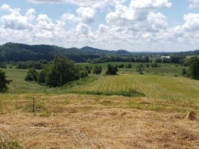 Approximately 93 Acres (Offered in 3 Tracts) of the Late Jerry Dotson at On Site Estate Auction featured photo 10