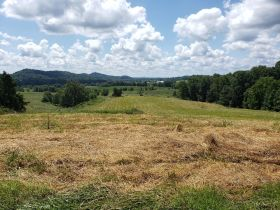 Approximately 93 Acres (Offered in 3 Tracts) of the Late Jerry Dotson at On Site Estate Auction featured photo 12