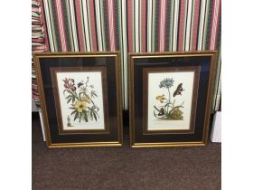 Combined Estates Fall Auction featured photo 5