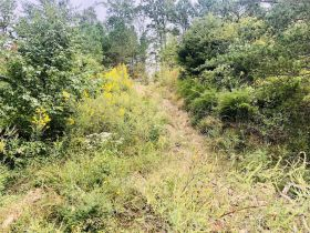 Online Only Absolute Approx. 59 acres +/- Whetstone Rd., Williamsburg, KY featured photo 9