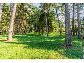 BEAUTIFUL HOME  AND WOODED LOT WITH A TENNIS COURT IN THE GATED COVINGTON GROVE SUBDIVISION featured photo 4