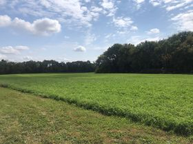 Centrally Located Vacant Land featured photo 1