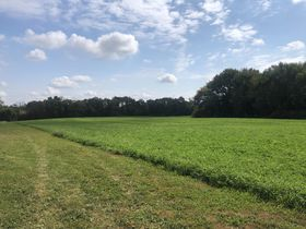 Centrally Located Vacant Land featured photo 2
