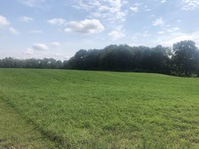 Centrally Located Vacant Land featured photo 7