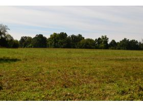 Approx. 97 Acres (Offered in 9 Tracts) of the Late Dora Verna Stafford Estate at Absolute Live Auction featured photo 10