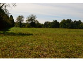 Approx. 97 Acres (Offered in 9 Tracts) of the Late Dora Verna Stafford Estate at Absolute Live Auction featured photo 11