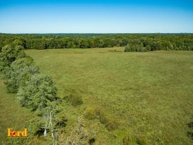 Approx. 97 Acres (Offered in 9 Tracts) of the Late Dora Verna Stafford Estate at Absolute Live Auction featured photo 8