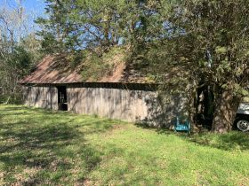 ABSOLUTE AUCTION: House - Outbuildings - Chicken Barn - on 6.30+/- Acres in Christiana featured photo 3
