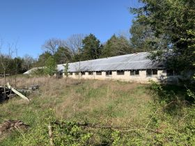 ABSOLUTE AUCTION: House - Outbuildings - Chicken Barn - on 6.30+/- Acres in Christiana featured photo 5