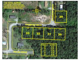 ABSOLUTE AUCTION | 5 RESIDENTIAL LOTS | PINELAND ESTATES SUBDIVISON featured photo 1