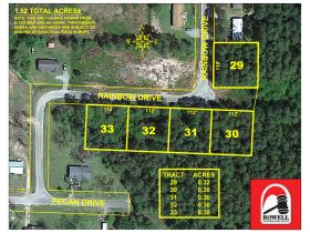 ABSOLUTE AUCTION | 5 RESIDENTIAL LOTS | PINELAND ESTATES SUBDIVISON featured photo 2