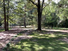 SOLD!! 21026 Hwy 51 N, Scobey, MS 38953 featured photo 7