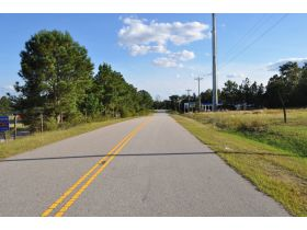 REAL ESTATE - FOR SALE! 24.8+/-ACRE OUT-PARCEL (Divided or Whole) ST MATTHEWS, CALHOUN COUNTY, SOUTH CAROLINA featured photo 9