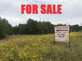 REAL ESTATE - FOR SALE! 24.8+/-ACRE OUT-PARCEL (Divided or Whole) ST MATTHEWS, CALHOUN COUNTY, SOUTH CAROLINA featured photo 1