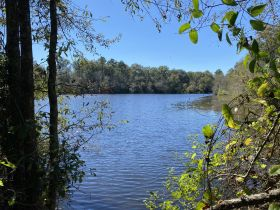 97 ± Acres | Offered Divided | Sportsman's Paradise featured photo 2