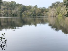 97 ± Acres | Offered Divided | Sportsman's Paradise featured photo 7