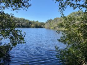 97 ± Acres | Offered Divided | Sportsman's Paradise featured photo 12