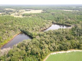 97 ± Acres | Offered Divided | Sportsman's Paradise featured photo 5