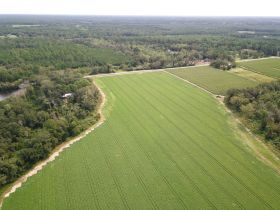97 ± Acres | Offered Divided | Sportsman's Paradise featured photo 3
