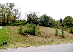 AUCTION featuring Vacant Building Lot in Stockett Creek Subdivision - One of the Few Lots Left - Gated Community with Gorgeous Views and Minutes to Nashville and Franklin! featured photo 6
