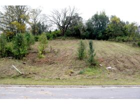 AUCTION featuring Vacant Building Lot in Stockett Creek Subdivision - One of the Few Lots Left - Gated Community with Gorgeous Views and Minutes to Nashville and Franklin! featured photo 7