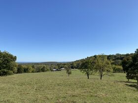 AUCTION featuring 450+/- Acres Offered in Large Tracts in Rockvale, TN - Newman Road featured photo 9