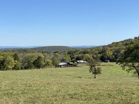 AUCTION featuring 450+/- Acres Offered in Large Tracts in Rockvale, TN - Newman Road featured photo 2