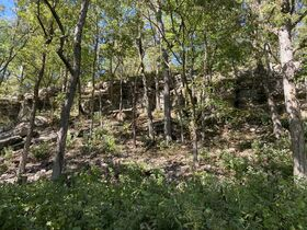 AUCTION featuring 450+/- Acres Offered in Large Tracts in Rockvale, TN - Newman Road featured photo 12