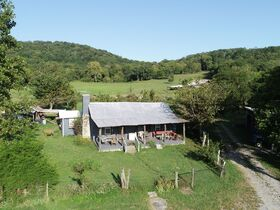 AUCTION featuring 450+/- Acres Offered in Large Tracts in Rockvale, TN - Newman Road featured photo 3
