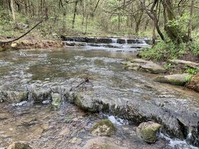 AUCTION featuring 450+/- Acres Offered in Large Tracts in Rockvale, TN - Newman Road featured photo 4
