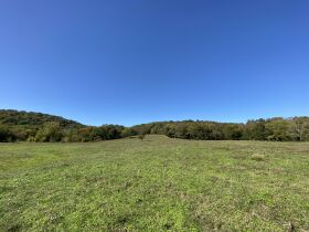 AUCTION featuring 450+/- Acres Offered in Large Tracts in Rockvale, TN - Newman Road featured photo 6