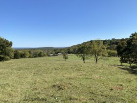 AUCTION featuring 450+/- Acres Offered in Large Tracts in Rockvale, TN - Newman Road featured photo 11