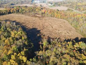113.78 Acres – 5 Parcels – Wooded & Open with Sites featured photo 1