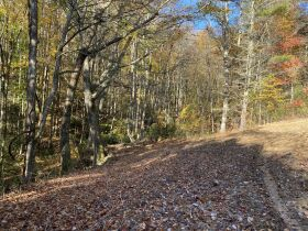 90 Acres - Johnson County, TN featured photo 5