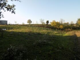 F859   6403 Energy Road, Ewing, KY 41039   (Farm) (Land) featured photo 12