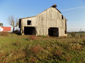 F859   6403 Energy Road, Ewing, KY 41039   (Farm) (Land) featured photo 8