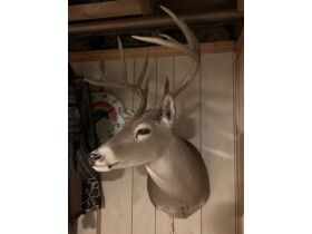 Fall Sportsmans Auction featured photo 10