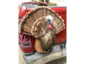 Fall Sportsmans Auction featured photo 5