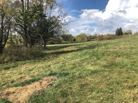 12.334 Acres - Absolute Live Auction featured photo 8