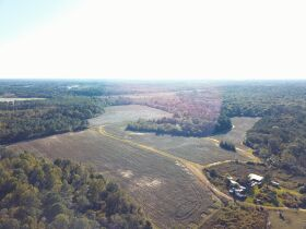 189 ± Acres   Excellent Ag and Timber Tract   Beautiful Homesites featured photo 2