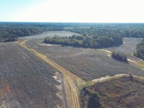 189 ± Acres   Excellent Ag and Timber Tract   Beautiful Homesites featured photo 9