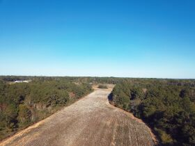 189 ± Acres   Excellent Ag and Timber Tract   Beautiful Homesites featured photo 7