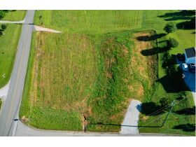 New Clear Branch Rd, Rocky Top, TN  37769 $21,000 featured photo 2