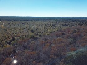 146± Acres Recreational Tract | Homesites | Offered Divided featured photo 7
