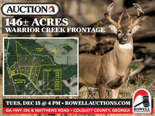 146± Acres Recreational Tract | Homesites | Offered Divided featured photo