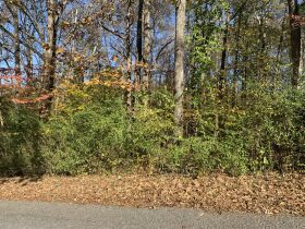 .37+/- Acre Home or RV Lot | Online Real Estate Au