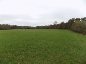 39.37 Acres * Open & Wooded * As a Whole featured photo 1