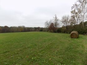 39.37 Acres * Open & Wooded * As a Whole featured photo 2