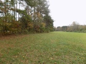 39.37 Acres * Open & Wooded * As a Whole featured photo 3