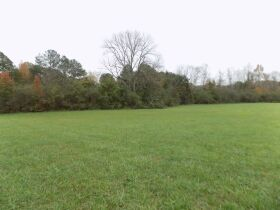 39.37 Acres * Open & Wooded * As a Whole featured photo 5
